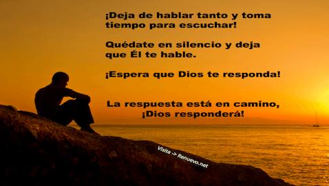 Reflexiones Urgente Renuevo De Plenitud Espiritualidad Y