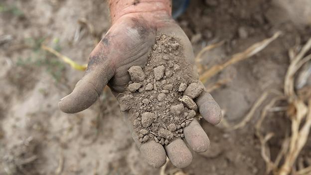 OPINIÓN: Una crisis alimentaria abrumará la economía mundial en 2013