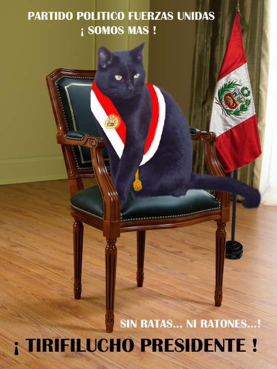 TIRIFILUCHO PRESIDENTE DEL PERU